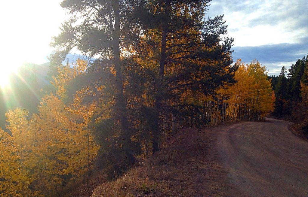 Fall Color, Boreas Pass