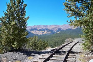 Boreas Pass, fall color