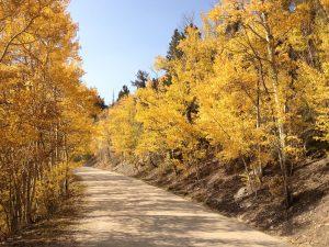 Breckenridge Colorado, Boreas Pass, fall color