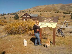 Summit of Boreas Pass, fall color